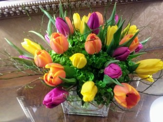 Mixed Arrangement of Colorful Tulips