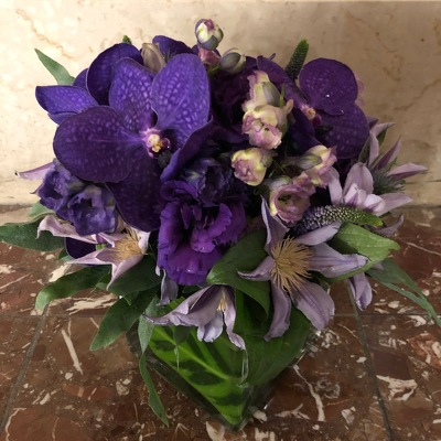 Purple Vanda Cube from Mangel Florist, flower shop at the Drake Hotel Chicago