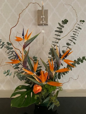 Birds of Paradise and Roses from Mangel Florist, flower shop at the Drake Hotel Chicago