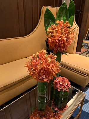 Trio of Orchids from Mangel Florist, flower shop at the Drake Hotel Chicago
