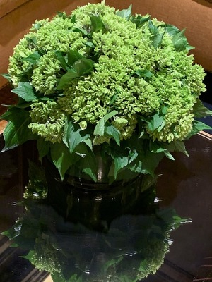Low Mini Green Hydrangea from Mangel Florist, flower shop at the Drake Hotel Chicago