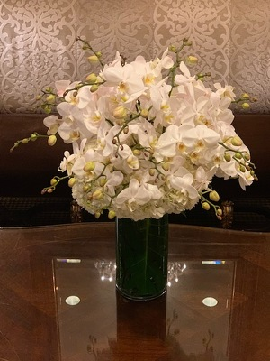 Hydrangea and Orchid Arrangement  from Mangel Florist, flower shop at the Drake Hotel Chicago