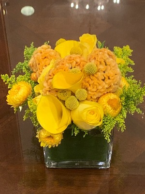 Monochomatic Yellow Arrangement  from Mangel Florist, flower shop at the Drake Hotel Chicago