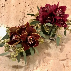 Burgundy Cymbidium Orchid Cube from Mangel Florist, flower shop at the Drake Hotel Chicago