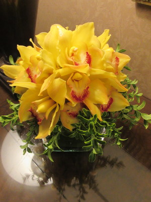 Yellow Orchid Cube  from Mangel Florist, flower shop at the Drake Hotel Chicago