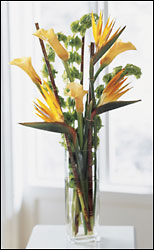 Tropical Tall Vase of Tropical Florals Arranged from Mangel Florist, flower shop at the Drake Hotel Chicago