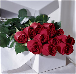 One Dozen Boxed Roses from Mangel Florist, flower shop at the Drake Hotel Chicago