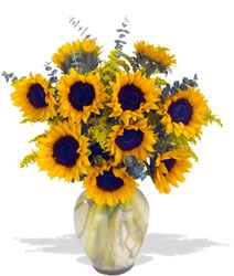 Endless Sunflower Bouquet from Mangel Florist, flower shop at the Drake Hotel Chicago